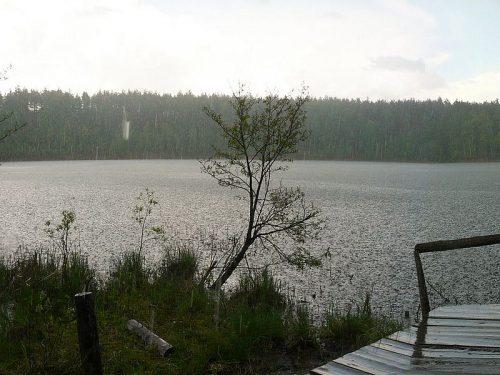 Круглое озеро (Брянская область)
