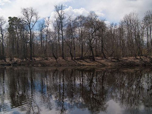 Боровень озеро