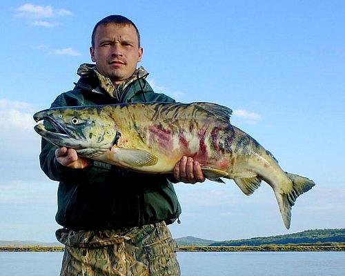 Рыболовный тур «Хищники Нижнего Амура»