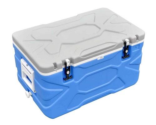 Холодильник для рыбалки – помощник либо обуза?
