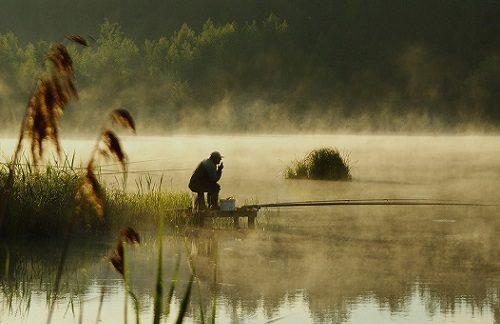 Ловля карася в августе