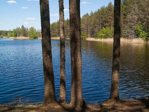 Халькино озеро