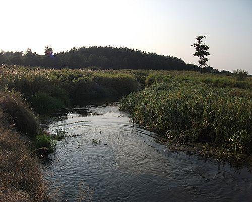 Вага (Брянская область)