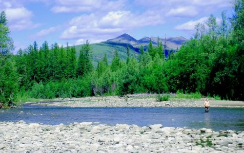 Рыболовный тур на реку Белянка