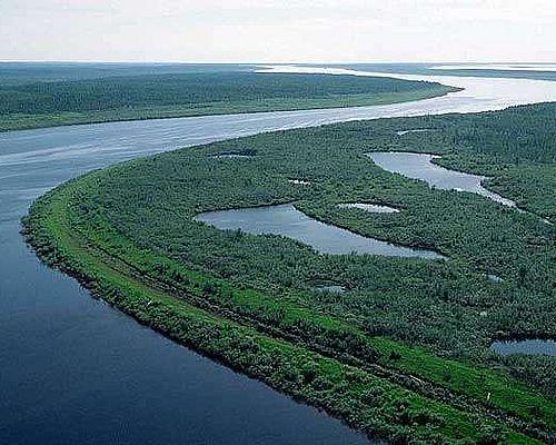 Рыболовный тур в Сибирь «Енисей»