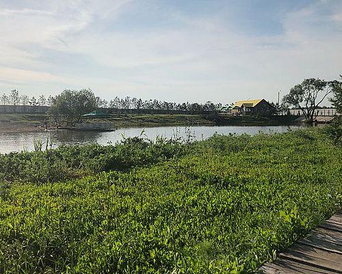 Рыбное хозяйство «Клевое Место Шмидтово»