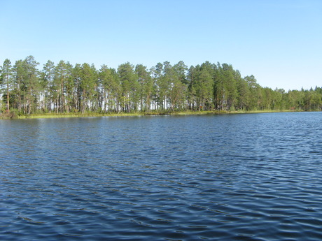 Жёлтое озеро
