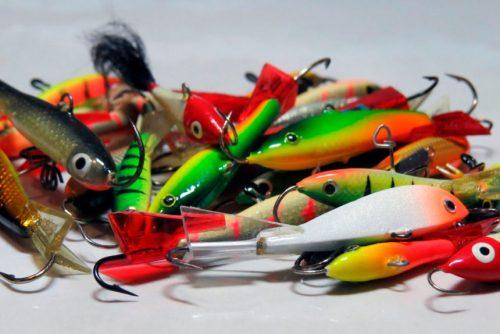 Рыбалка в Амурской области