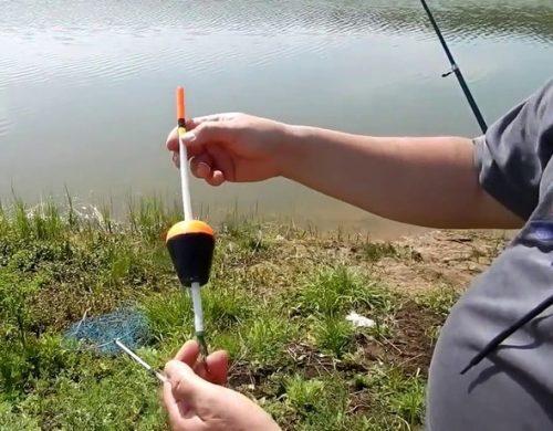 Ловля толстолобика в апреле на поплавочную удочку