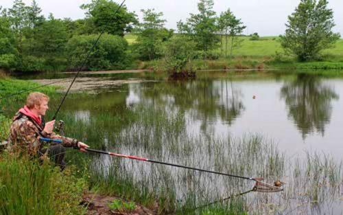 Ловля линя в мае