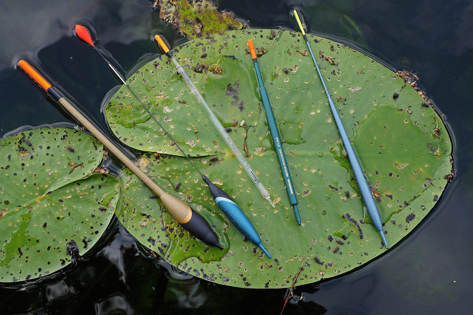 Ловля линя в июле на поплавочную удочку